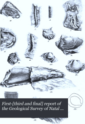 First-[third and Final] Report of the Geological Survey of Natal and Zululand: Volume 3