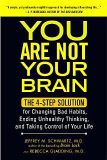 You Are Not Your Brain Book