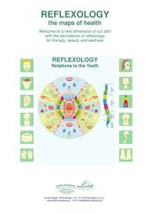 REFLEXOLOGY Relations to the Teeth: REFLEXOLOGY - the maps of health