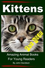 Kittens - For Kids - Amazing Animal Books For Young Readers