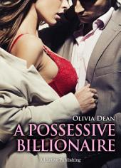 A Possessive Billionaire vol.1: His, Body and Soul