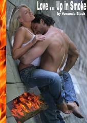 Love ... Up in Smoke: A Contemporary Fighterfighter Romance