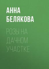 Розы на дачном участке