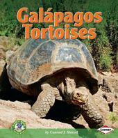 Galápagos Tortoises