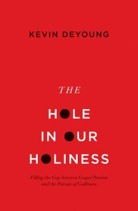 The Hole in Our Holiness Book