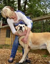 Gnadenhof - Tiere sind nicht einfach nur zum Nutzen von uns Menschen da: ECHT Oberfranken - Ausgabe 32