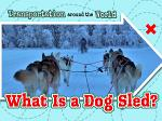 What Is a Dog Sled?