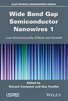 Wide Band Gap Semiconductor Nanowires 1 PDF