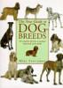 Dog Breeds Of The World