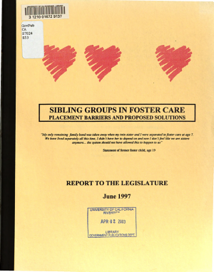 Sibling Groups in Foster Care PDF