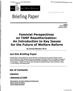 Feminist Perspectives on TANF Reauthorization PDF