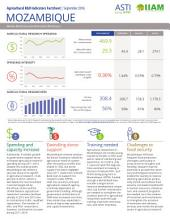 Mozambique: Agricultural R&D indicators factsheet