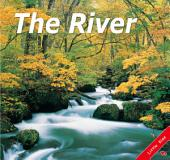 The River: Little Kiss22