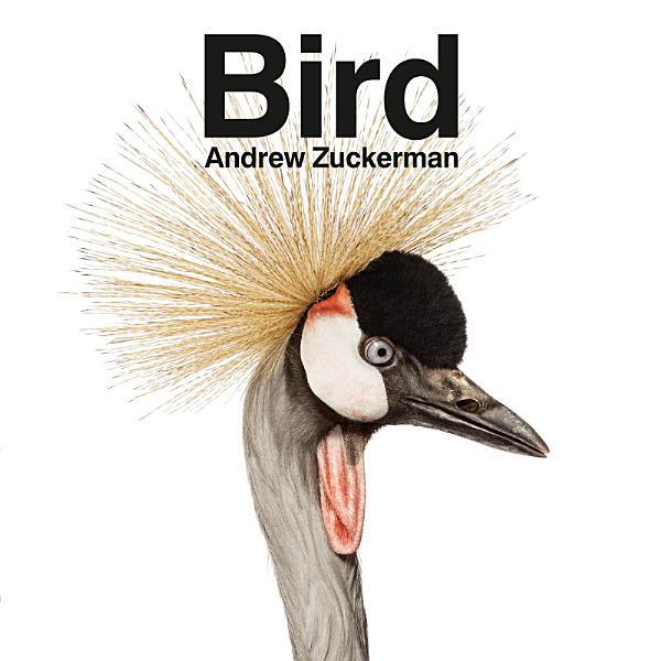 Download Bird Book