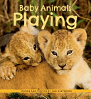 Baby Animals Playing PDF