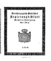Grossherzoglich-Badisches Staats- und Regierungs-Blatt: Band 6