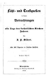 Licht- und Trostquellen in kurzen Betrachtungen auf alle Tage des katholischen Kirchen-Jahres: mit 367 Vignetten ...