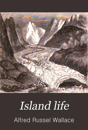 Island Life PDF