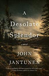 A Desolate Splendor: A Novel