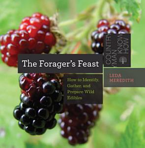 The Forager s Feast  How to Identify  Gather  and Prepare Wild Edibles  Countryman Know How  Book