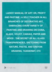Ladies' Manual of Art: Or, Profit and Pastime : a Self Teacher in All Branches of Decorative Art, Embracing Every Variety of Painting and Drawing on China, Glass, Velvet, Canvas, Paper and Wood : the Secret of All Glass Transparencies, Sketching from Nature, Pastel and Crayon Drawing, Taxidermy, Etc