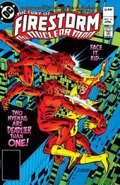 The Fury of Firestorm (1982-) #11