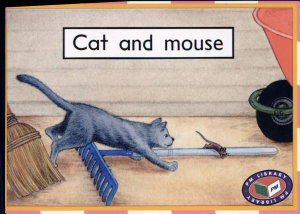 Cat And Mouse Book PDF