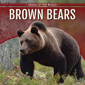 Brown Bears PDF