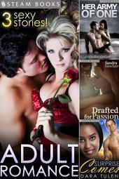 ADULT ROMANCE - 3 Sexy Stories!