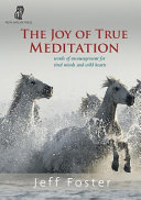 The Joy of True Meditation