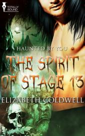 The Spirit of Stage 13