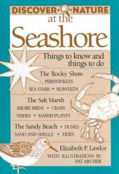 Discover Nature at the Seashore: Things to Know and Things to Do
