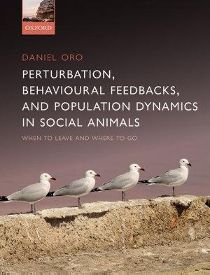 Perturbation, Behavioural Feedbacks, and Population Dynamics in Social Animals