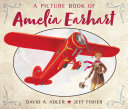 A Picture Book of Amelia Earhart PDF