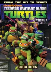 Teenage Mutant Ninja Turtles: Animated Vol. 3 - Showdown