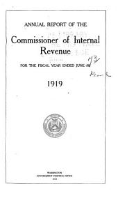 IRS Annual Report