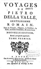 Voyages de Pietro della Valle,... dans la Turquie, l'Égypte, la Palestine, la Perse, les Indes orientales et autres lieux...