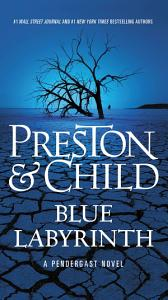 Blue Labyrinth Book