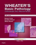 Wheater s Basic Pathology PDF