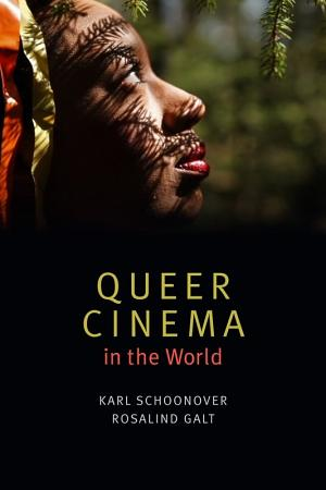Queer Cinema in the World PDF