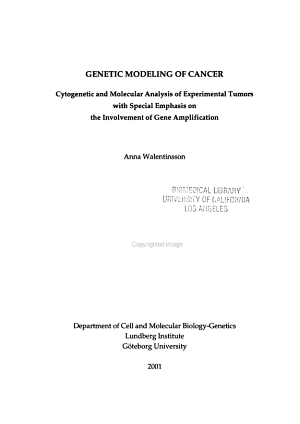 Genetic Modeling of Cancer