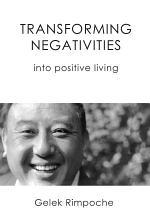 Transforming Negativities