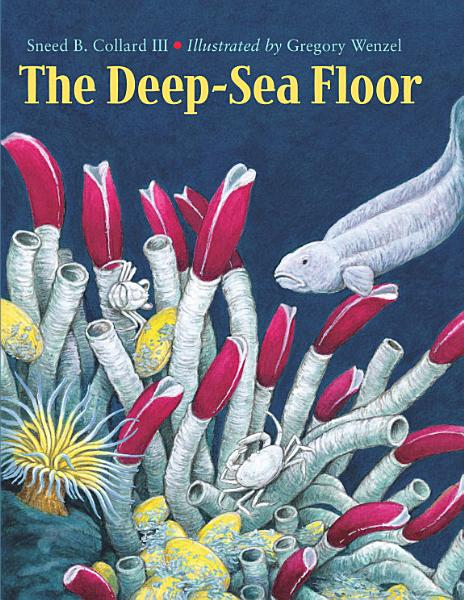 Download The Deep Sea Floor Book