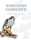 Northern Goshawk  the Gray Ghost PDF