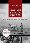 12 Million Black Voices PDF