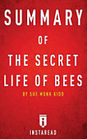 Summary of the Secret Life of Bees PDF