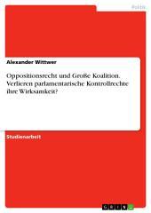 Oppositionsrecht und Große Koalition. Verlieren parlamentarische Kontrollrechte ihre Wirksamkeit?