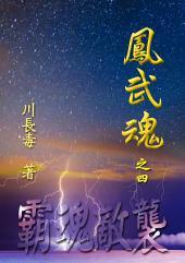 凤武魂之四:霸魂敌袭: 简体中文版