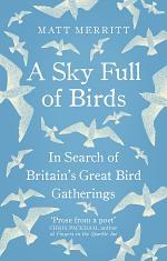 A Sky Full of Birds