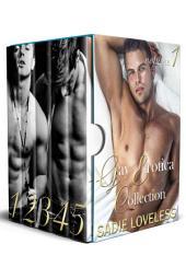 Gay Erotica Collection Volume 1: A Bundle of Steamy M/M Erotica